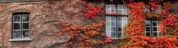 Ilustrační foto (www.shutterstock), kouzlo podzimu