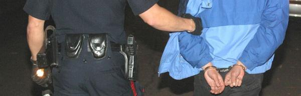 Ilustrační foto (www.shutterstock.com), na začátku je EZS a CCTV, na konci dopadený zloděj