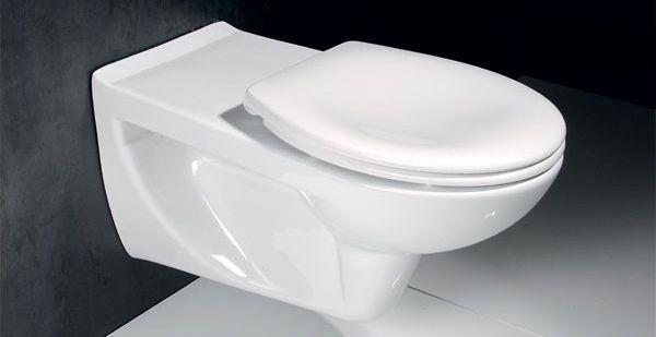 Zdroj: www.sapho-koupelny.cz, ETIUDA závěsné WC pro tělesně postižené
