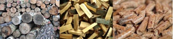 Ilustrační foto (www.shutterstock.com), některé z biomas