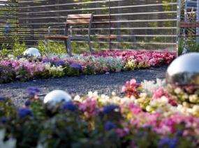 Foto: www.diegartentulln.at, Hra barev