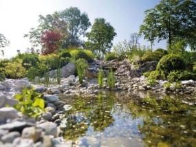 Foto: www.diegartentulln.at, Trendy zahrada