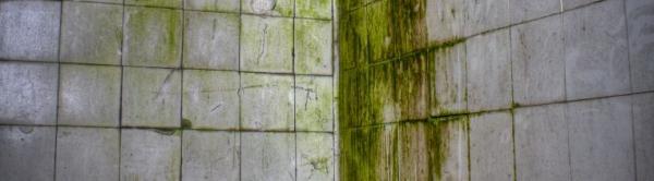 Ilustrační foto (www.shutterstock.com), osekat staré dlaždice, sanovat, rekonstruovat