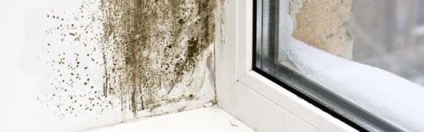 Ilustrační foto (www.shutterstock.com), vlivy vlhkosti na vnitřním ostění oken