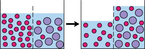 Ilustrační foto (www.shutterstock.com), princip elektroosmózy
