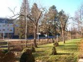 Foto: ČESKÉSTAVBY.cz, výhled ze zahrady na jih, 2 amatérsky říznuté staré jabloně budou muset pryč
