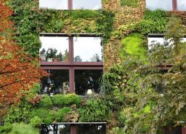Ilustrační foto (www.shutterstock.com), zahrada na stěně