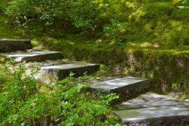 Ilustrační foto (www.shutterstock.com), kamenné schody