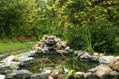 Ilustrační foto (www.shutterstock.com), zahradní jezírko