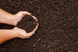 Ilustrační foto (www.shutterstock.com), kyselá rašelinná zemina o jemné zrnitosti