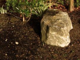 Ilustrační foto (www.shutterstock.com), přisypání rašeliny na povrch příliš zásadité půdy