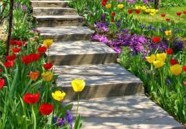 Ilustrační foto (www.shutterstock.com), betonové schody