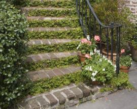 Ilustrační foto (www.shutterstock.com), cihlové schody kombinované s rostlinami