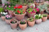 Ilustrační foto (www.shutterstock.com), vybetonovanou plochu kolem terasy z keramické dlažby rozbíjí keramické mobilní nádoby s rostlinami