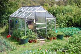 Ilustrační foto (www.shutterstock.com), běžný nevytápěný skleník