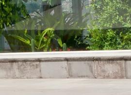 Ilustrační foto (www.shutterstock.com), základy botanického skleníku ze ztraceného bednění