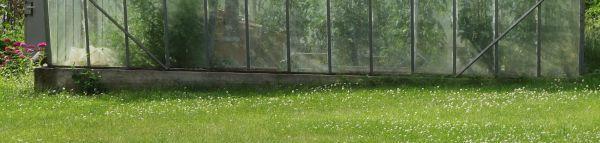 Ilustrační foto (www.shutterstock.com), nadzemní část základů zahradního skleníku stavěného do mírného svahu
