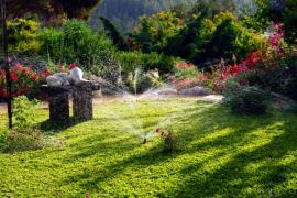 Ilustrační foto (www.shutterstock.com), pěstěný trávník v relaxační okrasné zahradě