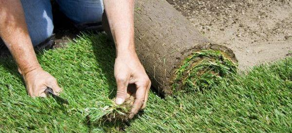 Ilustrační foto (www.shutterstock.com), pokládání travního koberce
