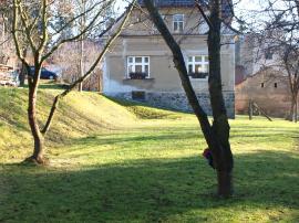 Foto: ČESKÉSTAVBY.cz, stávající dominantní stromy v horní části zahrady