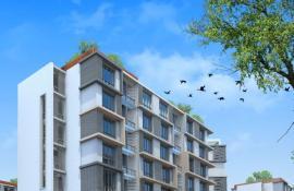 Ilustrační foto (www.shutterstock.com), intenzivní zelená střecha, pohled zdola