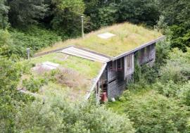 Ilustrační foto (www.shutterstock.com), šikmá zelená střecha na rekreační chatě