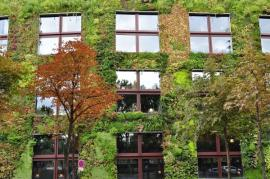 Ilustrační foto (www.shutterstock.com), vertikální zahrada