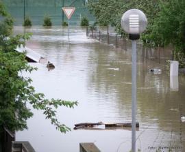Foto: www.domoja-cz.com
