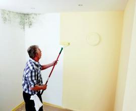 Foto: JUB, Barva JUPOL Citro – ochrana proti rozvoji plísní v koupelnách a kuchyních