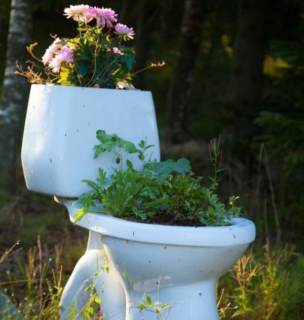 Ilustrační foto (www.shutterstock.com), A co s vyřazeným záchodem? Třeba toto.