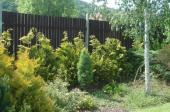 Foto: SLZA, realizovaná zahrada