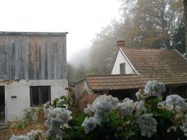 Foto: Ing. Hana Zachariášová, Muškáty - nezbytný dpolněk oken