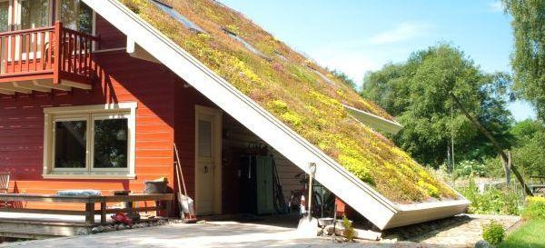 Ilustrační foto (www.shutterstock.com), vegetační může být i šikmá střecha, skladba takové střechy je s výjimkou krovu obdobná jako té ploché