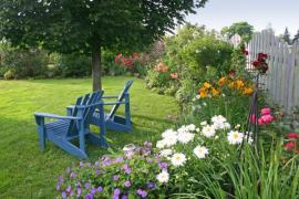 Ilustrační foto (www.shutterstock.com), letní záplava květů