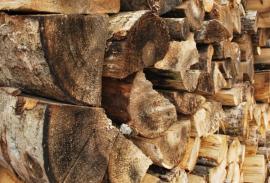 Ilustrační foto (www.shutterstock.com), uskladněné březové dřevo