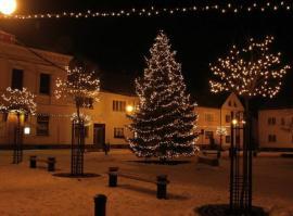 Foto: Repam, venkovní vánoční světelné dekorace - řetězy