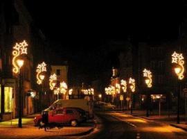 Foto: Repam, venkovní vánoční světelné dekorace - motivy