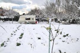Ilustrační foto (www.shutterstock.com), sníh na záhonech, zimní výsadba odolné zeleniny