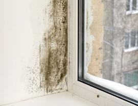 Plíseň na vnitřním ostění po montáži nového plastového okna