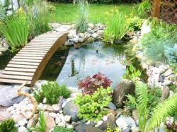 Okrasné jezírko v japonské zahradě