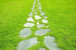Kamenná cestička uprostřed trávníku, jednotlivé kameny jako nášlapné plochy, trávníku se daří