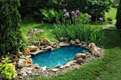 Jezírko zlepšuje klima na zahradě a přitahuje život