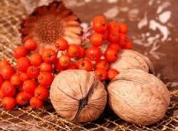 Říjnové zátiší, sklízíme vlašské ořechy, aranžujeme, inspirujeme se podzimními barvami
