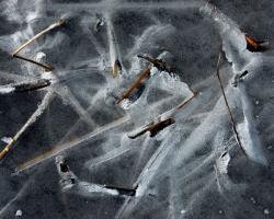 Zamrzlá hladina