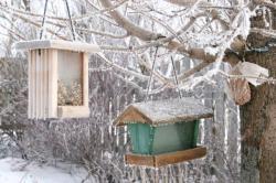 Krmítka k zimě neodmyslitelně patří, udrží v zahradě život
