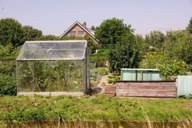 Zahrada u rodinného domu
