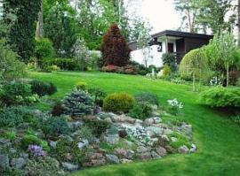 Skalka realizované zahrady ve svahu