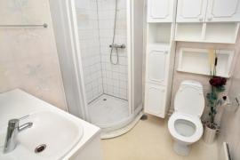 Malá koupelna se sprchovým koutem a WC