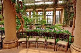 Prvky vertikální zahrady v interiéru