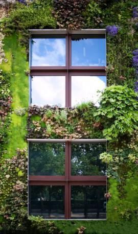 Venkovní vertikální zahrada